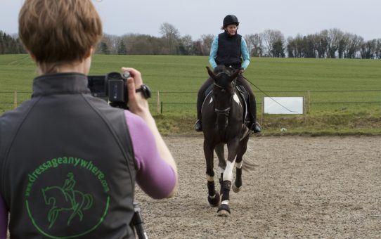 Dressage Anywhere's top tips for success