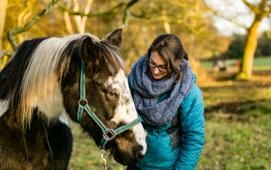 A few tips to keep your horse fit in winter